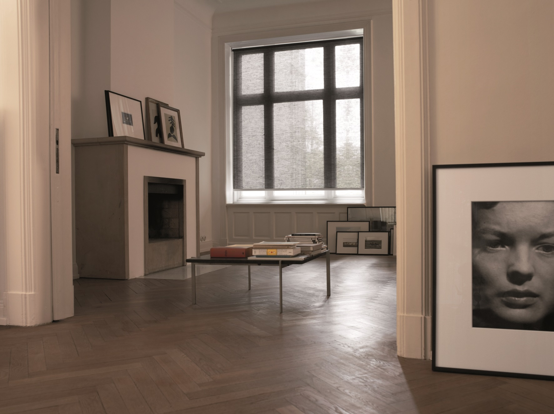 plissee rollo wohnzimmer:DUETTE® Plissee Wohnzimmer Plissees Doppelrollo